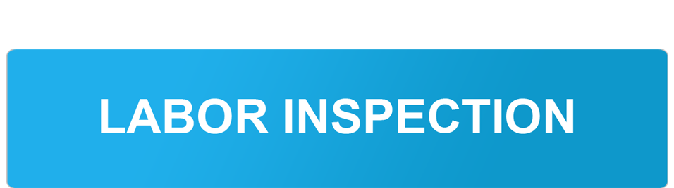 Labor Inspection